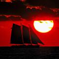 Key West Sunset Sail Silhouette by Bob Slitzan