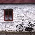 Kilarney  Ireland by Ernie Ferguson