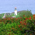 Kilauea Lighthouse Kauai Hawaii by Mary Deal