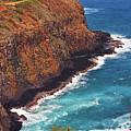 Kilauea Lighthouse On The Island Of Kauai, Hawaii, United States Of America          by Sam Antonio Photography