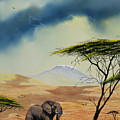 Kilimanjaro Bull by Don Griffiths