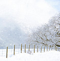 Kindness Is Like Snow - Winter Art by Jordan Blackstone