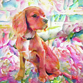 King Charles Spaniel Pastel Watercolors by Peggy Collins
