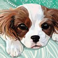Spaniel Puppy Resting by Plum Ovelgonne