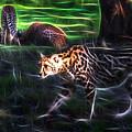 King Cheetah And 3 Cubs by Miroslava Jurcik