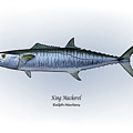 King Mackerel by Ralph Martens