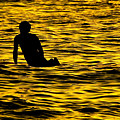 King Midas Surfing by Jason Jacobs