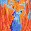 King Of The Fall by Belinda Nagy