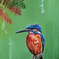 Kingfisher by Arie Van der Wijst
