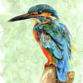 Kingfisher Blue by Bonnita Moaby