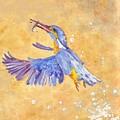 Kingfisher by Christine Burn