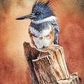 Kingfisher I by Greg and Linda Halom