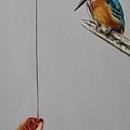 Kingfisher by Rebecca Tecla