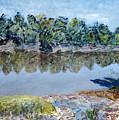 Kings River by Joan De Bot