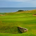 Kingsbarns Golf Links Hole #18 by Scott Carda