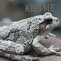 Kiss Me Frog by Tom Johnson