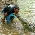 Kissing A Crocodile by Kenneth Lempert
