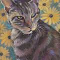 Kit Cat by Jane Oriel
