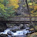 Kitchen Creek Bridge by Philip LeVee