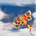 Kite Dreams by Patricia Stalter