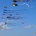 Kite Season by Clayton Bruster