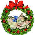 Kitten In A Christmas Wreath by Rafael Salazar