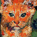 Kitten Orange Tabby Oil Painting by Ginette Callaway