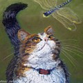 Kitty And The Dragonfly Close-up by Minaz Jantz