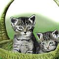 Kitty Caddy by Ferrel Cordle