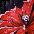 Kitty Flower by Phyllis Kaltenbach