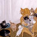 Kitty Litter II by Karen Zuk Rosenblatt
