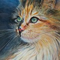Kitty  by Renee Roig
