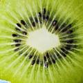 Kiwi Cut by Ray Laskowitz - Printscapes