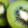 Kiwi Fruit Halves by Ray Laskowitz - Printscapes
