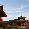 Kiyomizu-dera In Bloom by Brian Kamprath