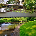 Knisley Covered Bridge #6 by Lisa Wooten