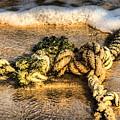 Knot Again... by Chroma Photographer