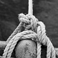 Knot On My Warf Iv by Stephen Mitchell