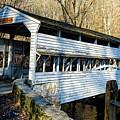 Knox Covered Bridge by Louis Dallara