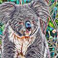 Koala by Marvin Blaine