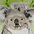 Koalas by Carol Blackhurst