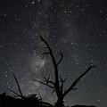 Kodachrome Basin Night Sky 2957 by Bob Neiman