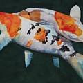 Koi Fish by Brad Schulze