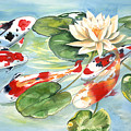 Koi In The Water Lilies by Ileana Carreno