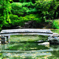 Koi Pond Bridge - Japanese Garden by Bill Cannon