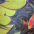 Koi Pond by Madeleine Arnett