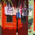 Kokina Red Door by Bob Phillips