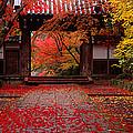Komyoji Temple  Kyoto Japan by Panoramic Images