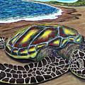Kona Turtle by Luke Walker