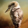 Kookaburra by Michele Wright